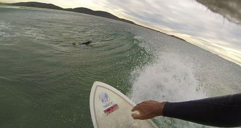 Crescent Head surfer watershot