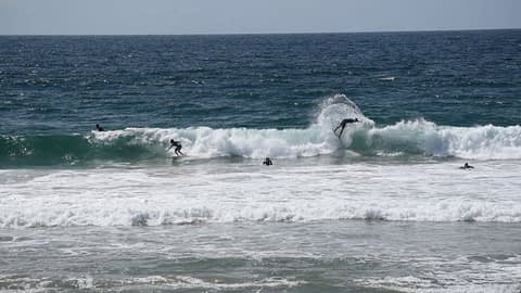surfing at dee why video