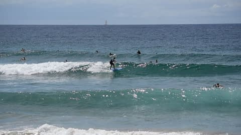 surfers at dy video