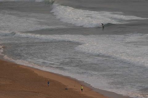 narrabeen surfer