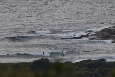 dy surfers
