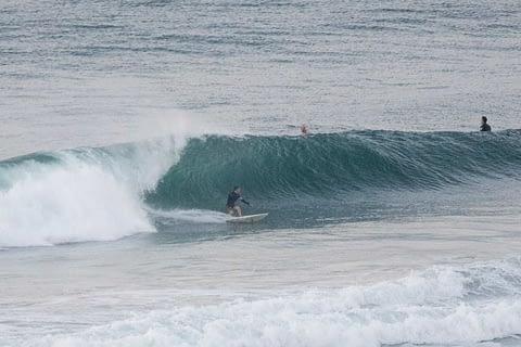 surfer dee why beach