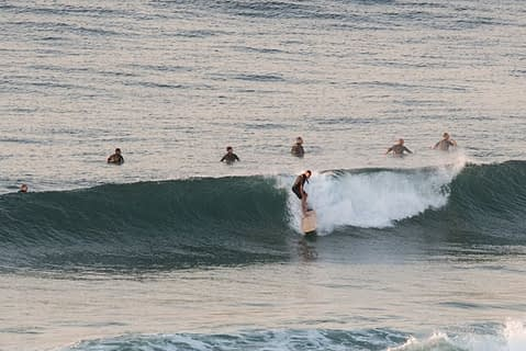 long reef surfers
