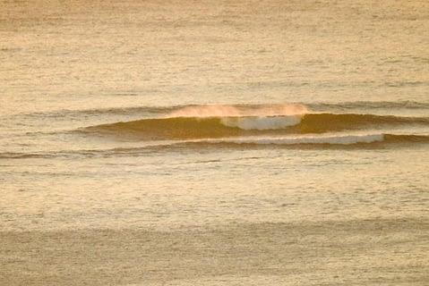 makaha waves
