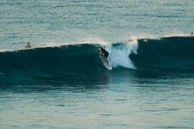 dy surfer